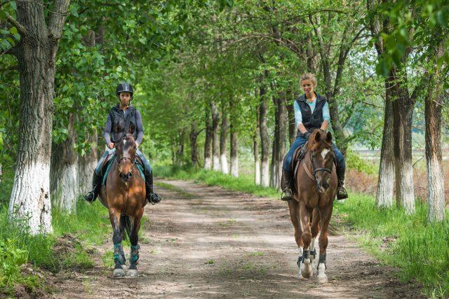 Équitation et prévention des blessures: 7 astuces pour les enfants et les débutants