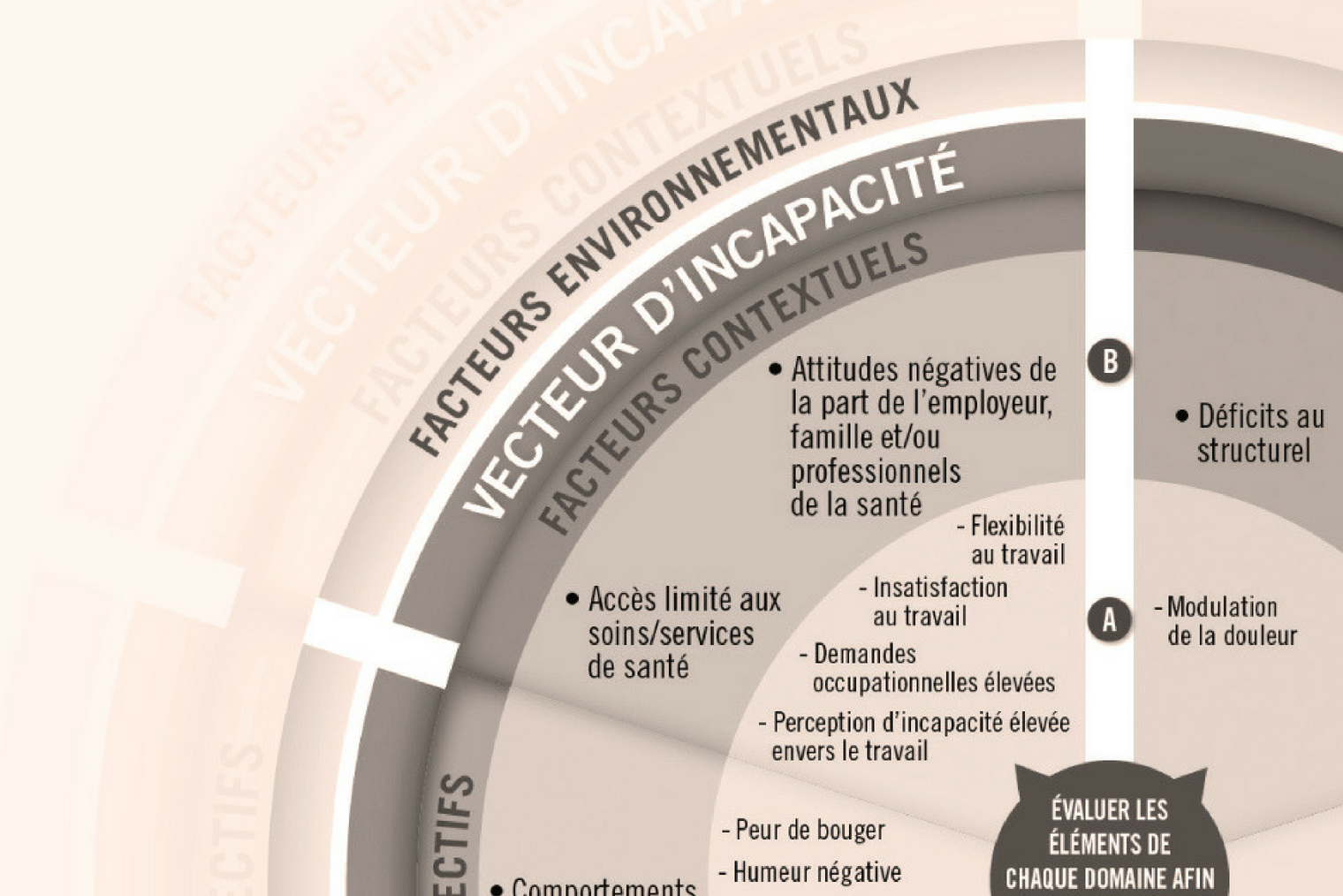 Formation : lombalgie complexe