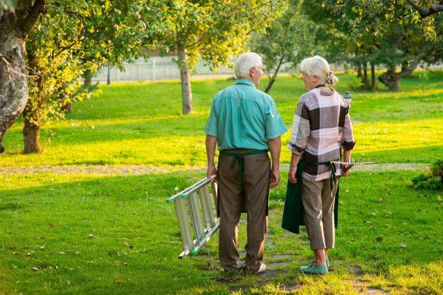 Maux de dos: prendre soin de son dos au gré des saisons