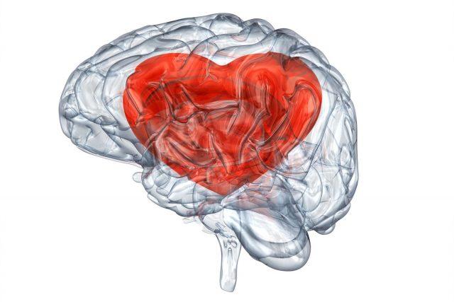 Traumatismes crâniens et AVC: le rôle de la physiothérapie